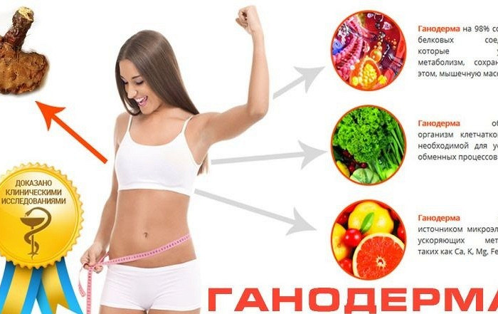 алексей ковальков этапы похудения